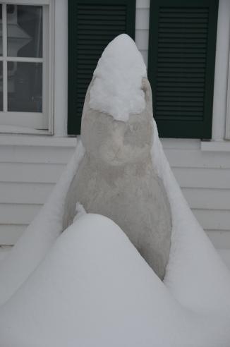 """Big Max"" in the snow"